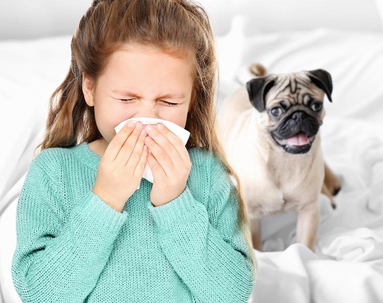 1.-Animal--Or-Pet--Allergies