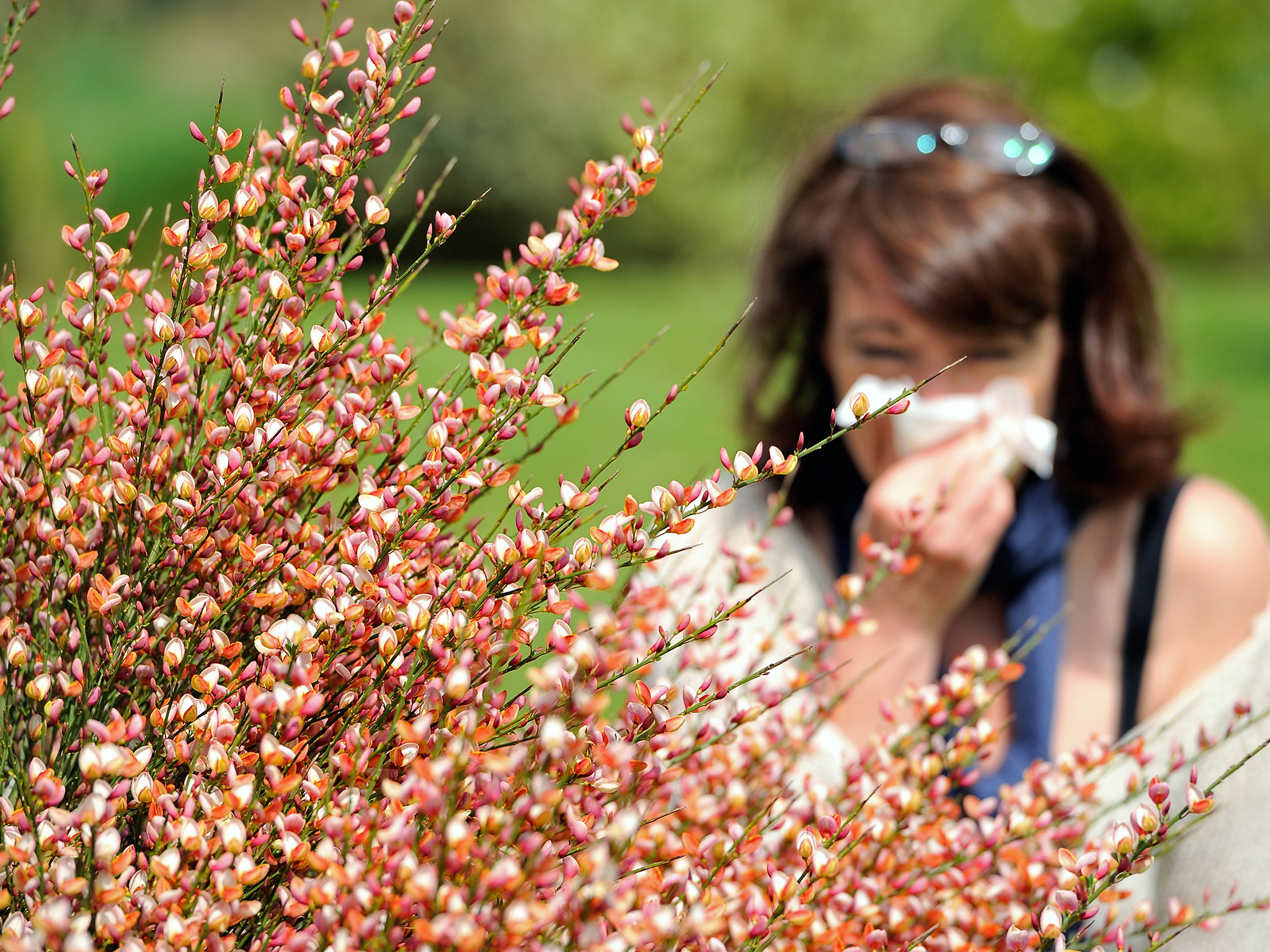 Different Types Of Allergy That You May Experience In Your Life