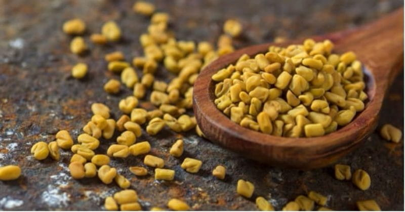 10.--Fenugreek-seeds