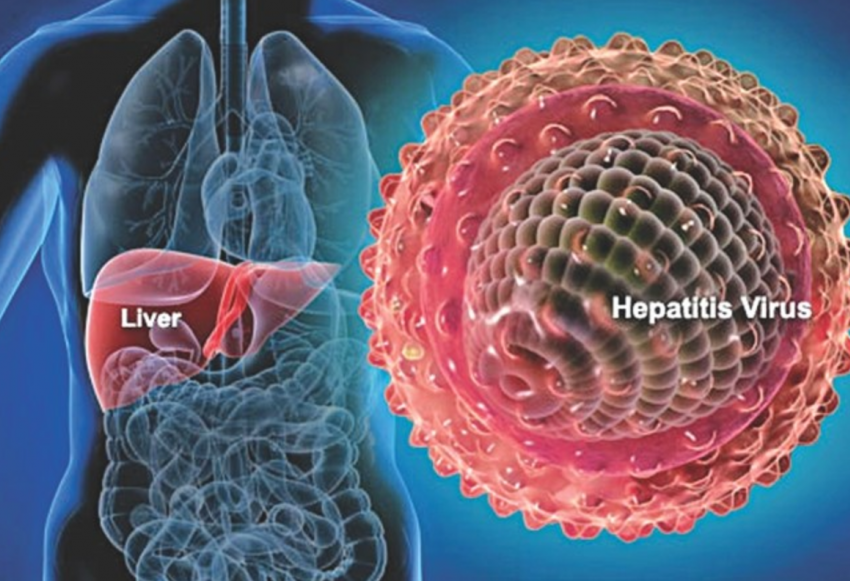16.-Hepatitis-A