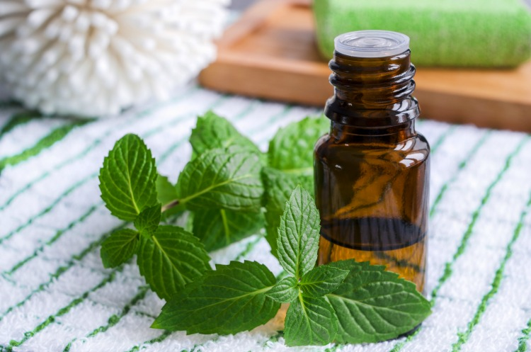18-Peppermint-Oil-
