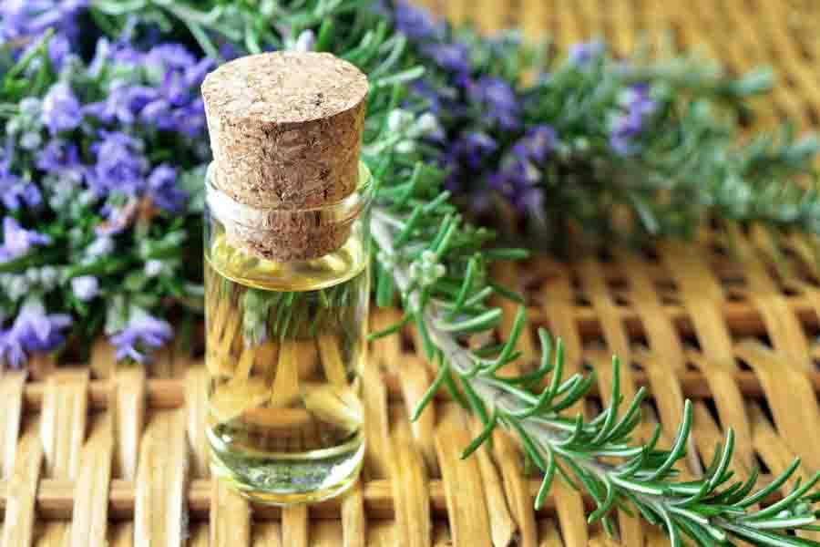4.-Rosemary-Oil-