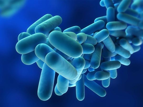 Legionellosis (Legionnaires' Disease) Causes, Symptoms, Diagnosis & Treatment